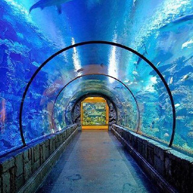PG漂亮水族馆亚克力隧道