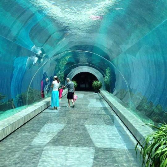 天堂海洋亚克力隧道水族馆